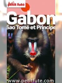 Gabon 2016 Petit Futé (avec cartes, photos + avis des lecteurs)